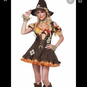 M California Costumes Sassy scarecrow costume